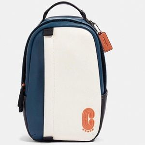 Coach Leather Edge pack